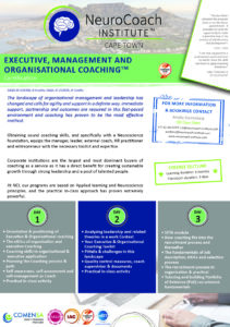Cape Town Executive, Management and Organisational Coaching brochure A5